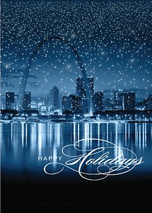 St. Louis Starry Border - Navy