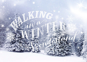 Winter Wonderland Walking