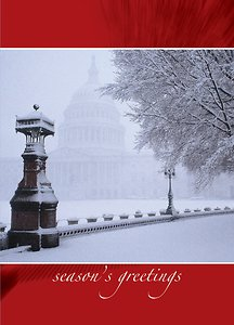 Washington DC- Snowy View
