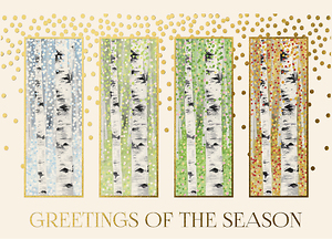 Birch Tree Seasons