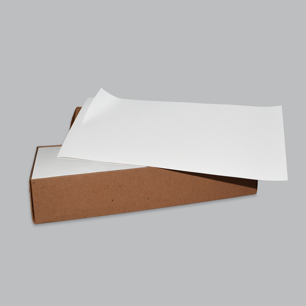 "Expandable File Label Blank, 4 1/4"" X 10"" Expandable File Laser Label 1up 250/BX"